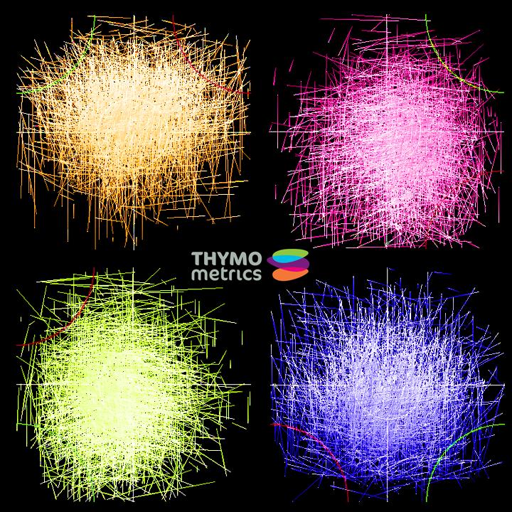 Thymo Xmas Image