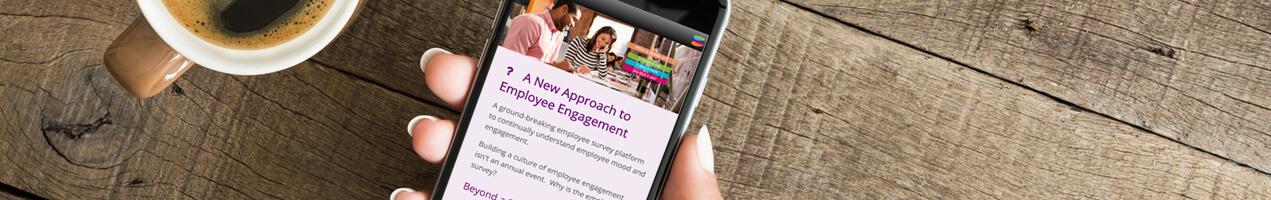 employee-feedback-contact